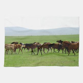 Horses on Pasture - Landscape Photograph Kitchen Towel