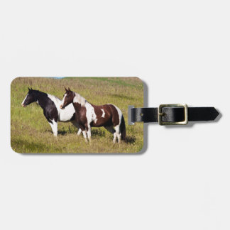 Horses on the hillside tags for luggage