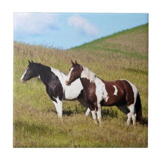 Horses on the hillside tiles