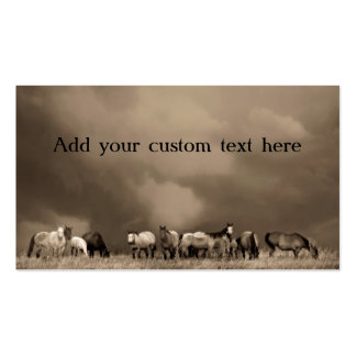 Horses on the Prairie Business Cards