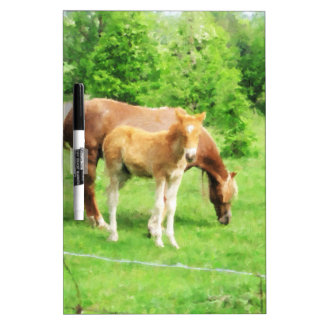 Horses relaxing in the field dry erase board