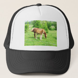 Horses relaxing in the field trucker hat
