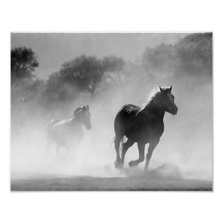 Horses Running in the Fog Black and White Poster