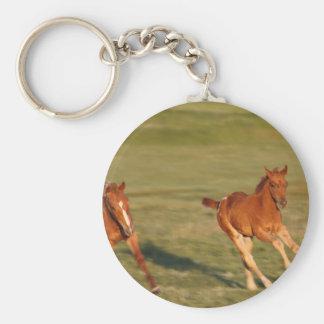 Horses Running Wild Keychain