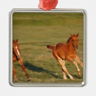 Horses Running Wild Metal Ornament