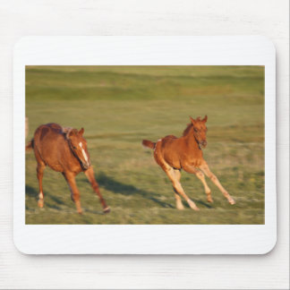 Horses Running Wild Mouse Pad