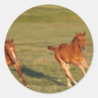 Horses Running Wild Round Sticker