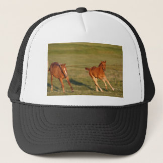 Horses Running Wild Trucker Hat