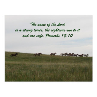 Horses running with scripture postcard