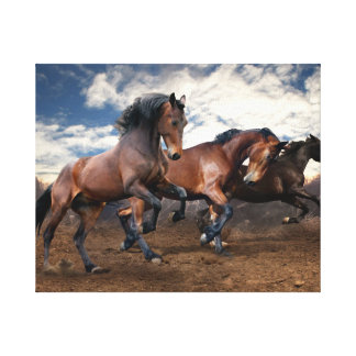Horses wall paint canvas print