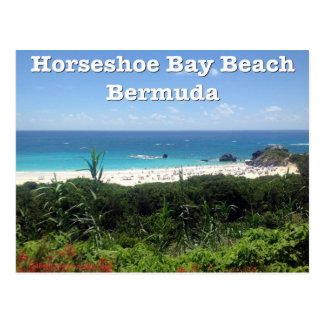 Horseshoe Bay Beach, Bermuda Postcard