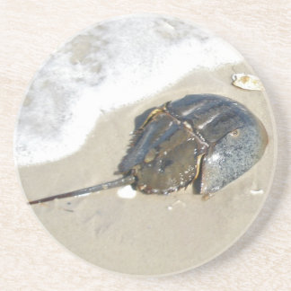 Horseshoe Crab Coaster