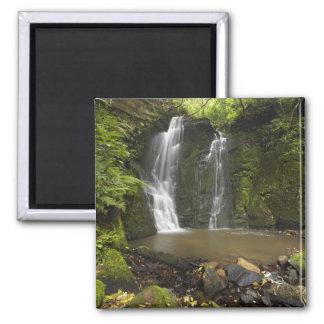 Horseshoe Falls, Matai Falls Square Magnet