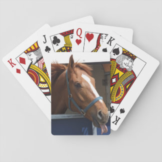 Horsing around - cheeky chestnut horse. playing cards