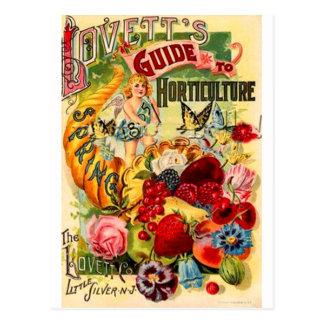 Horticulture Postcard