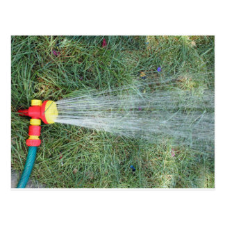 Hose with a spray watering the lawn closeup postcard