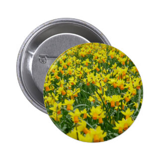 Host of Daffodils Button