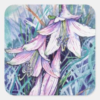 Hosta in bloom square sticker