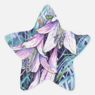 Hosta in bloom star sticker