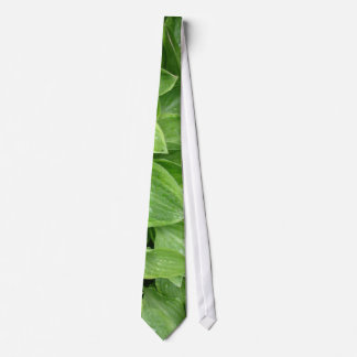 Hosta Tie #1