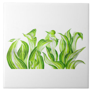 'Hosta with the Mosta' on a Ceramic Tile