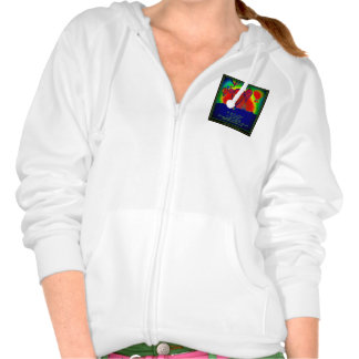 Hot Air Balloon Design & Inspiration Clothing Hooded Pullovers