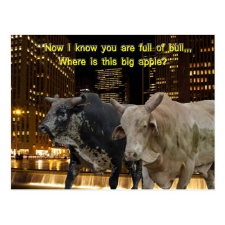 Hot Bulls In The City Post Card