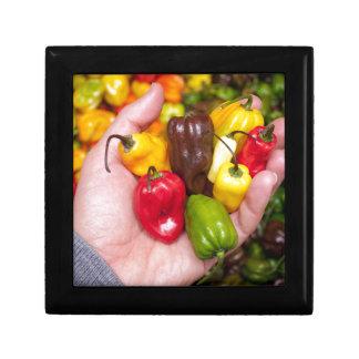 Hot crops gift box