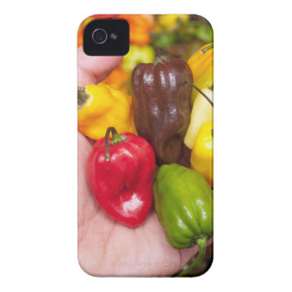 Hot crops iPhone 4 case