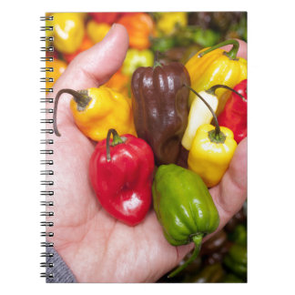 Hot crops notebook