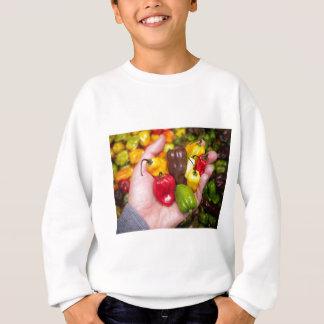 Hot crops sweatshirt