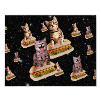 hot dog cat invasion poster
