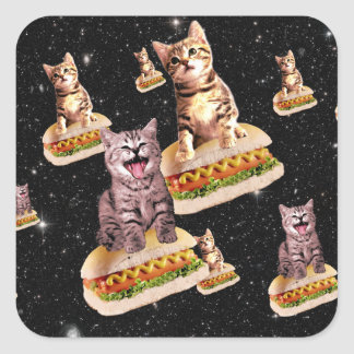 hot dog cat invasion square sticker