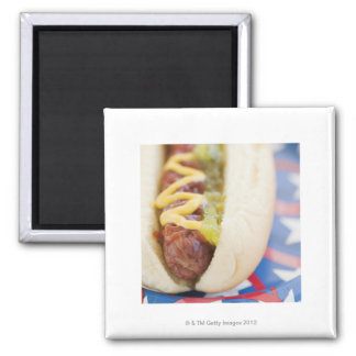 Hot Dog on Red, White, and Blue Plate Square Magnet