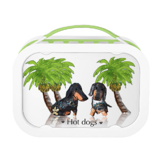 Hot Dogs Lunch Box