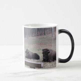 Hot or Cold? Mug