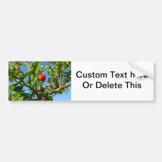 hot peppers on plant sky back bumper sticker