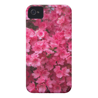 Hot Pink Azalea Blossoms Case-Mate iPhone 4 Case