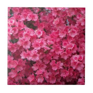 Hot Pink Azalea Blossoms Tile