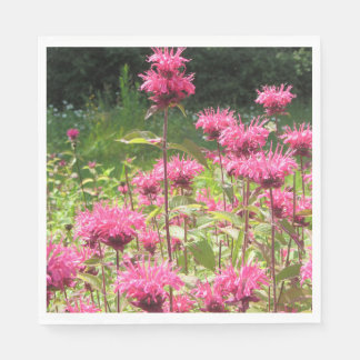 Hot Pink Bee Balm Paper Napkin