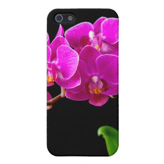 Hot Pink Dendrobium Orchid Flower Orchids Template iPhone 5 Cover