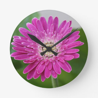 Hot Pink Gerbera Clock