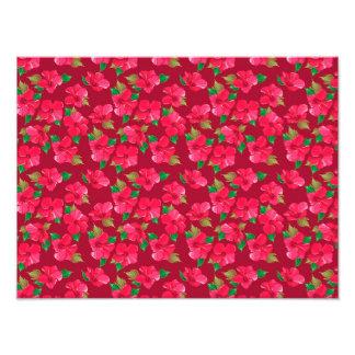 Hot Pink hibiscus Pattern Photo