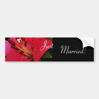 Hot Pink Lily Wedding Bumper Sticker