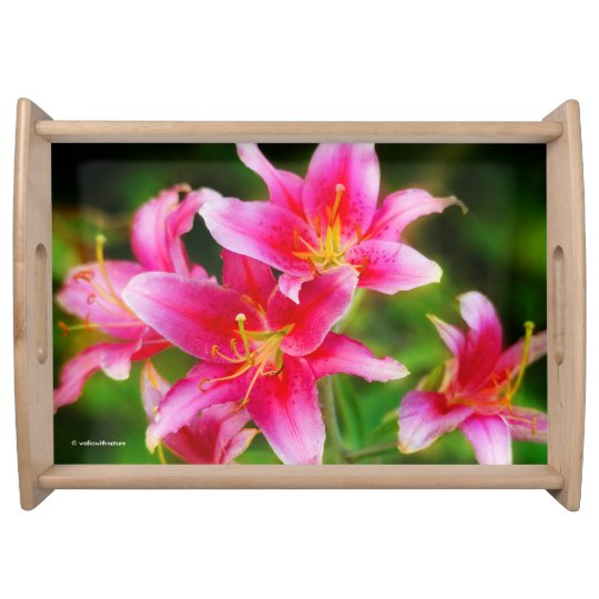 Hot Pink Olympic Torch Lilies Serving Trays
