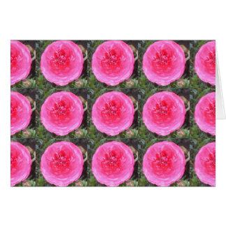 Hot Pink Ranunculus Flowers Card