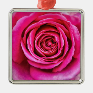 Hot Pink Rose Silver-Colored Square Ornament