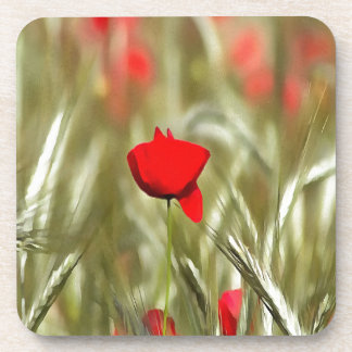 Hot Poppy Drink Coasters