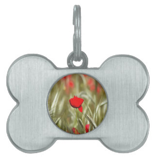 Hot Poppy Pet ID Tag