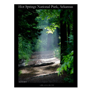 Hot Springs National Park Dead Chief Trail Gifts Postcard